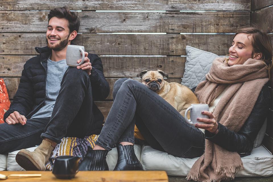 par med hund
