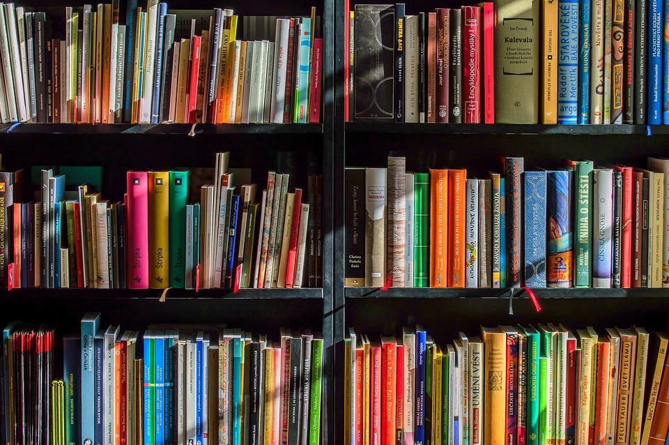Reol fyldt med bøger