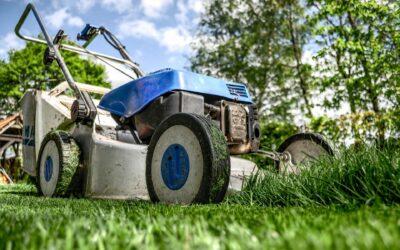 Bring privatlivet tilbage til din have med færdighække