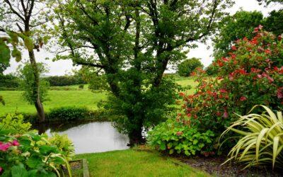 Gå foråret i møde med en ny have