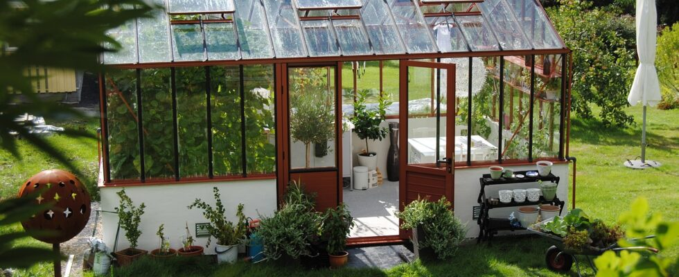 sådan kan du bruge dine gamle vinduer