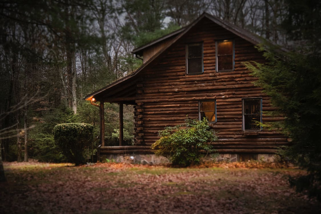 træhus og skov